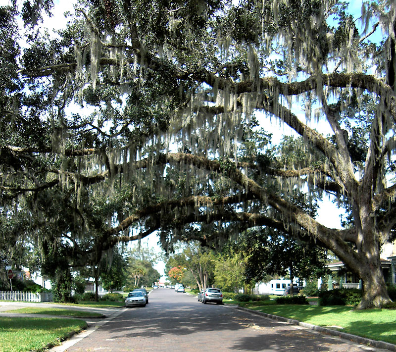 Day 66 – Sanford Historic Residential District