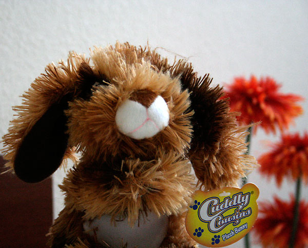 Day 207 – Easter Bunny