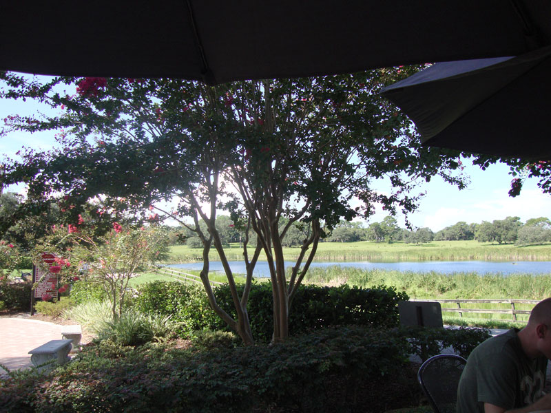 View from Patio at Peach Valley Cafe Lake Mary