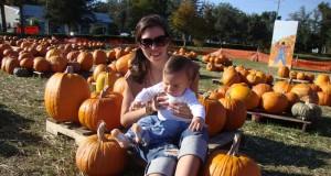 N's First Pumpkin Patch