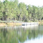 Seminole State Forest