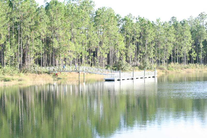 Picture of My Day – 60 – Seminole State Forest Sanford