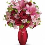 seminole-flower