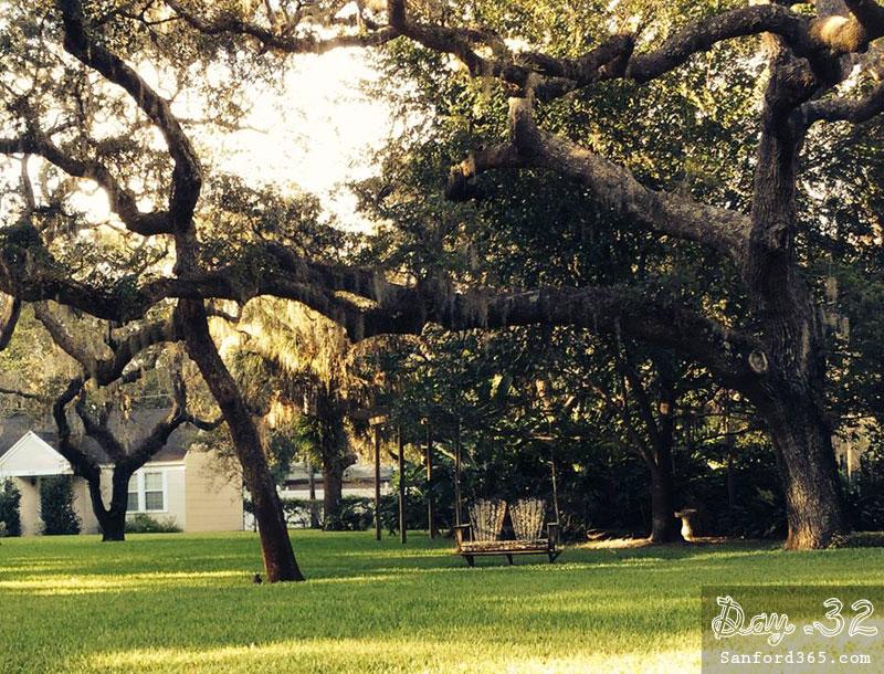Tree in Sanford FL