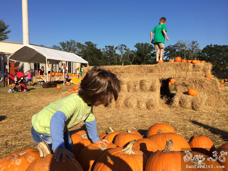 Lakeside Fellowship Pumpkin Patch