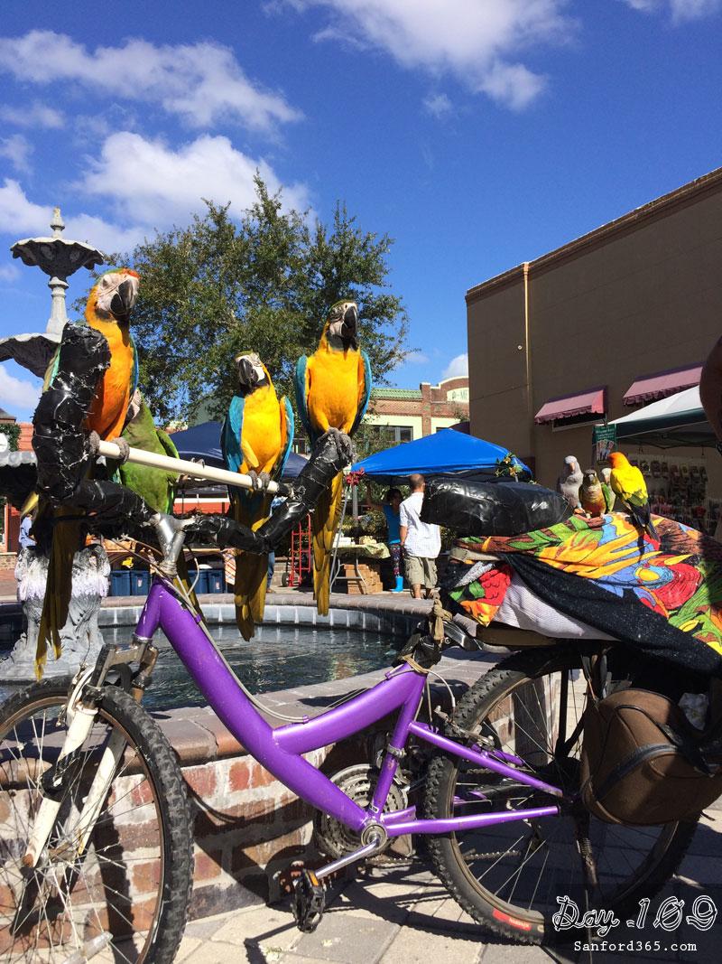 Sanford Bird Man