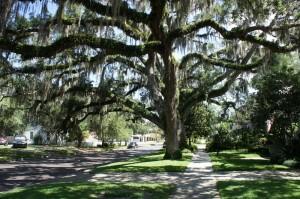 Historic Sanford FL