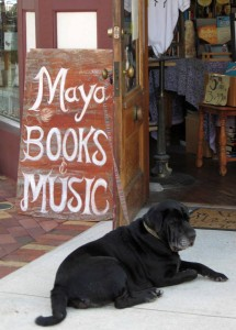 Layla at Maya's Bookstore
