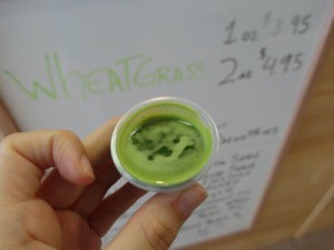 wheatgrass-15