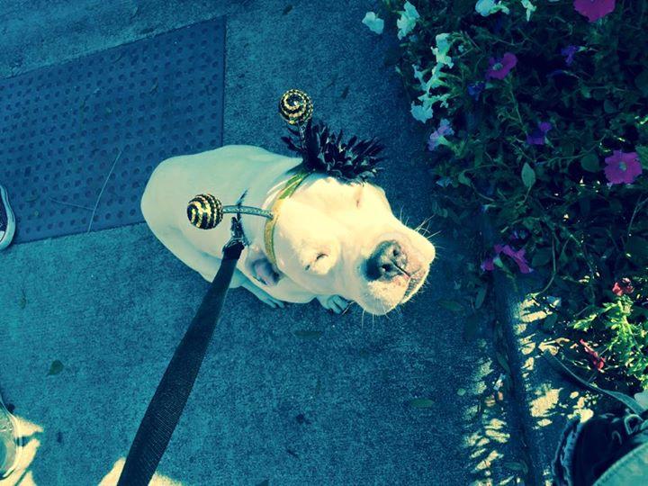 Chastity Saleh April Sanford Selfie Saturday
