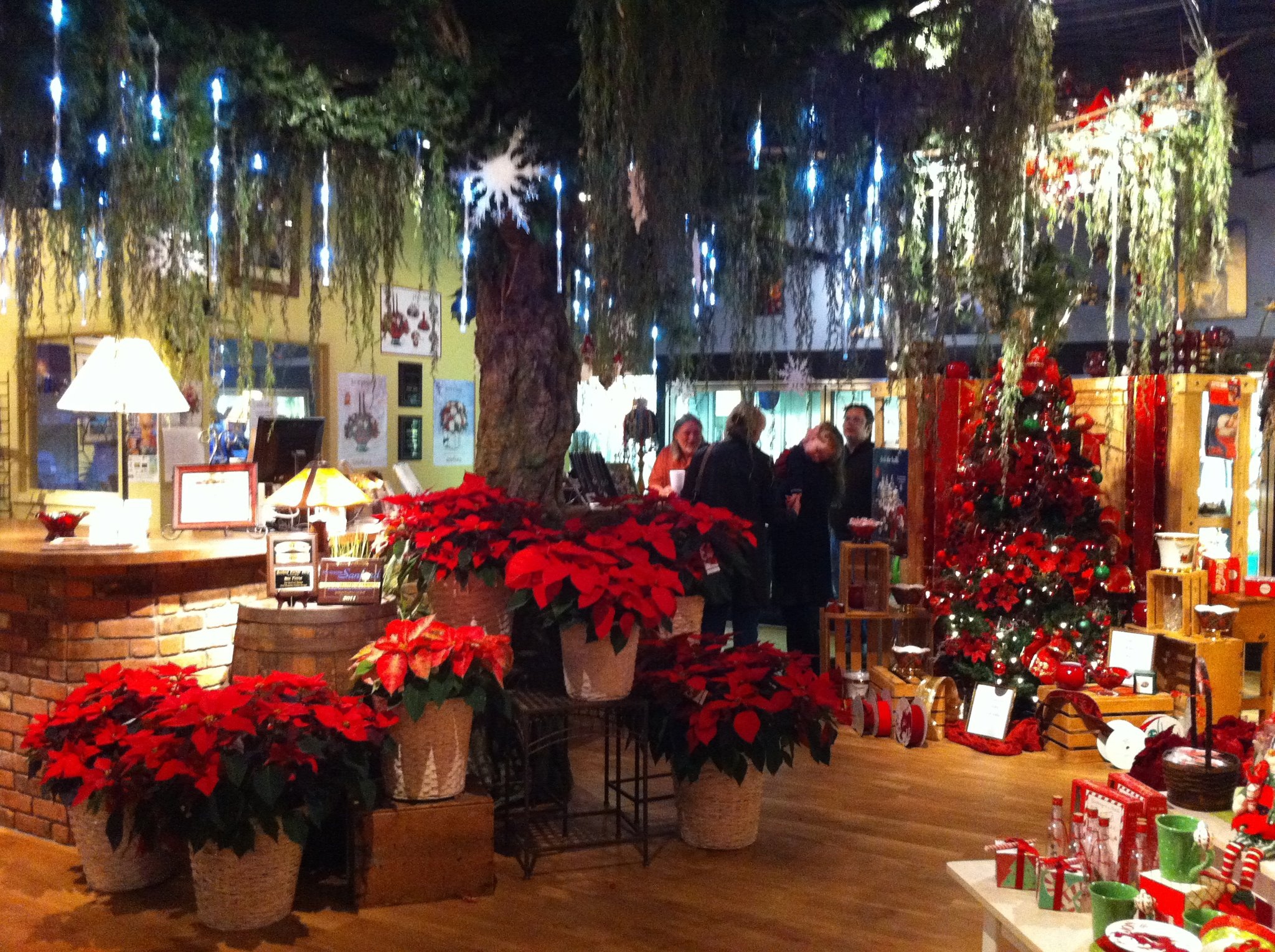 flower shop christmas